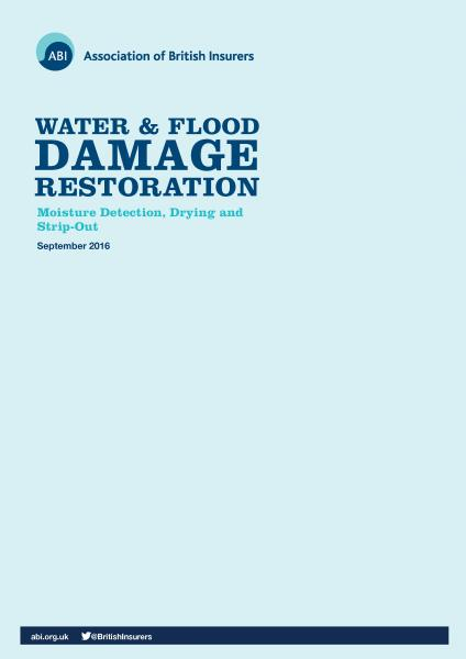 ABI water & flood damage restoration brochure