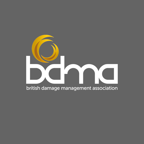 BDMA News Logo