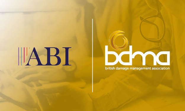 ABI e-Learning Offer - The BDMA