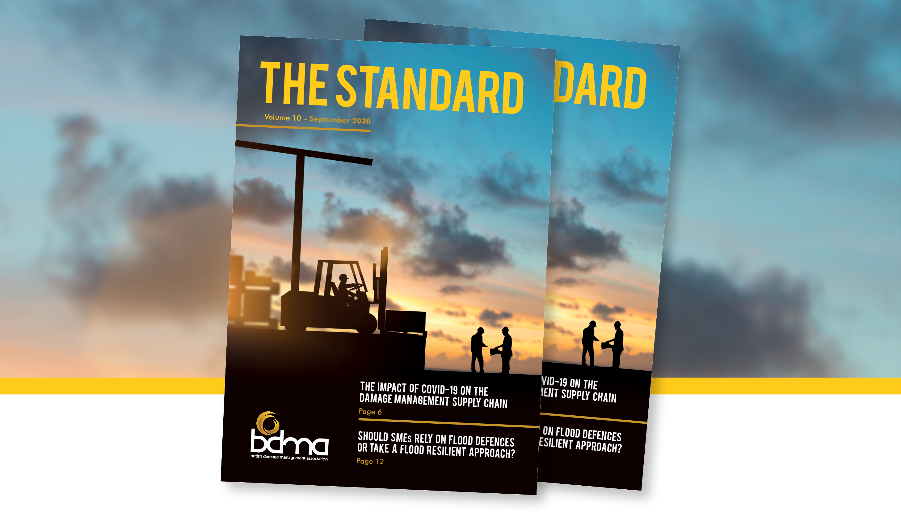 The Standard - September 2020 - The BDMA